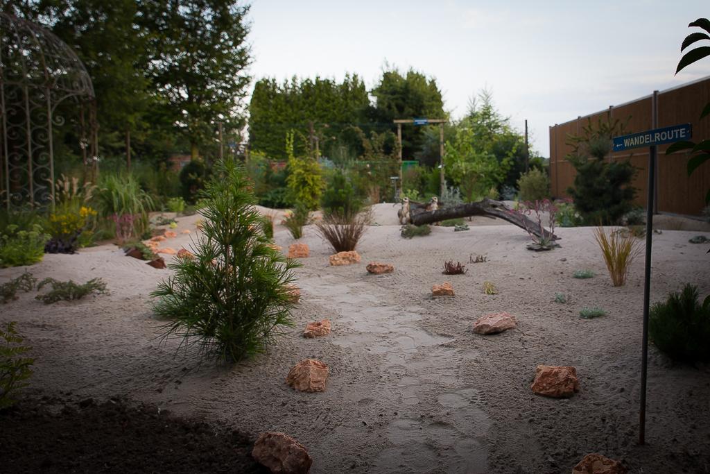 De woestijntuin