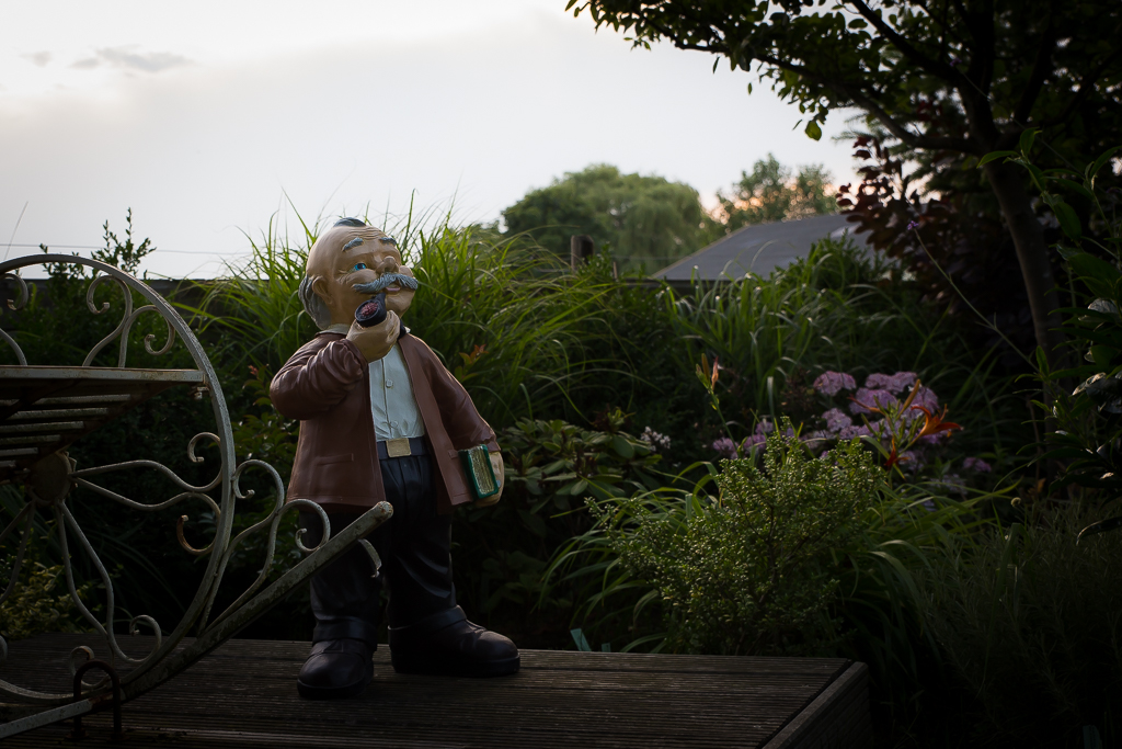Levenscarroussel: 'De seniorentuin'
